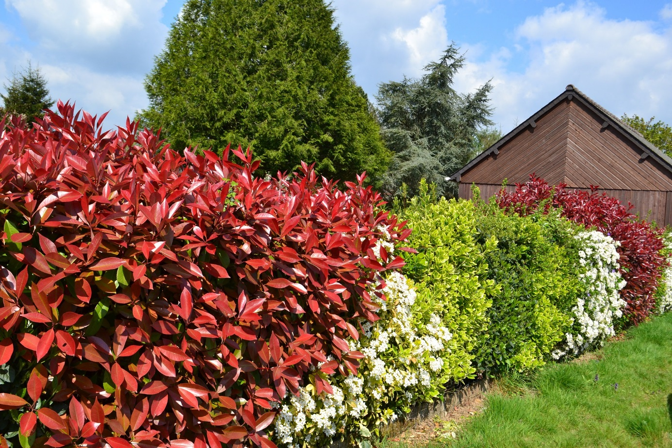 Brise Vue Hauteur 1M70 44 façons de se cacher de vos voisins au jardin (photos et