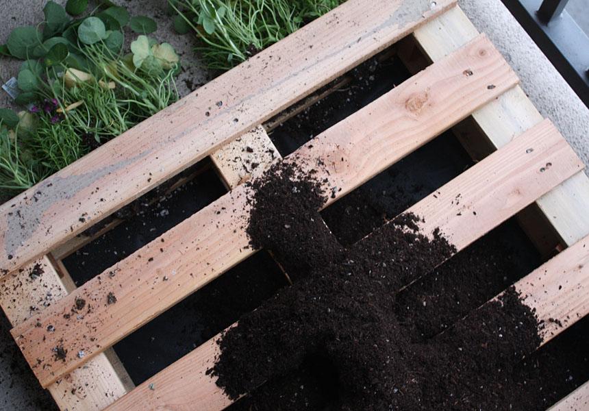 Cr er un jardin ou un mur v g tal partir d 39 une palette - Ou trouver palettes en bois ...