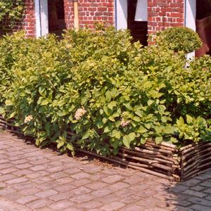Bordures de jardin bien les choisir for Bordure en noisetier tresse