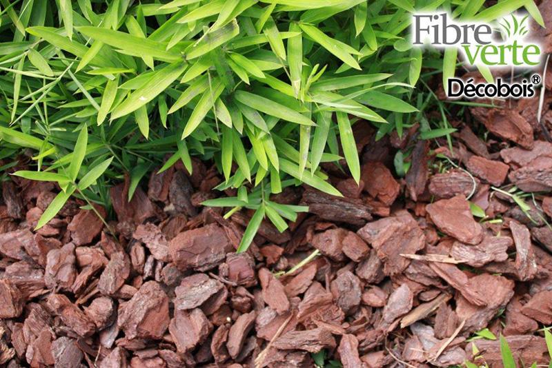 Ecorce de pin maritime - ©Fibre Verte