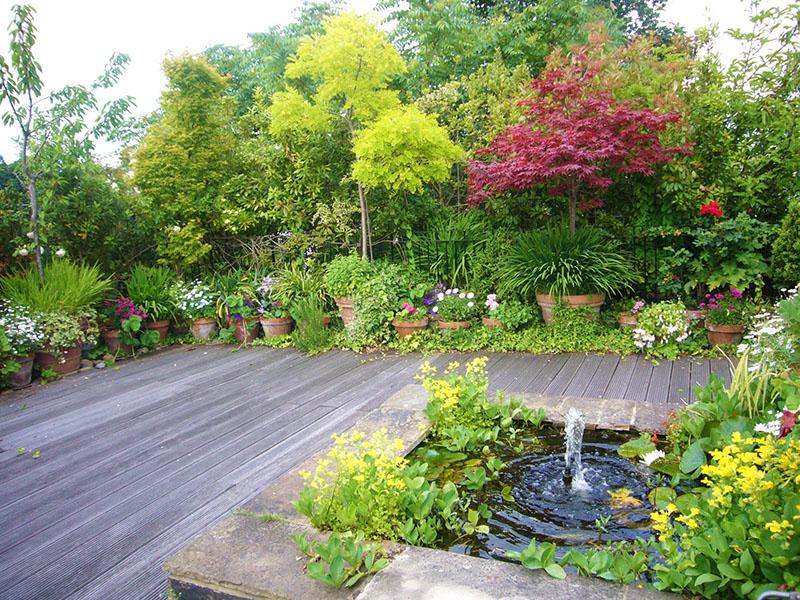 photos les jardins terrasses sur les toits