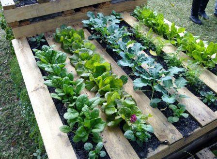 5 id es pour recycler des palettes en bois dans son jardin. Black Bedroom Furniture Sets. Home Design Ideas