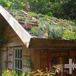 Abri de jardin avec toiture végétalisée ©livingroofsinc.com