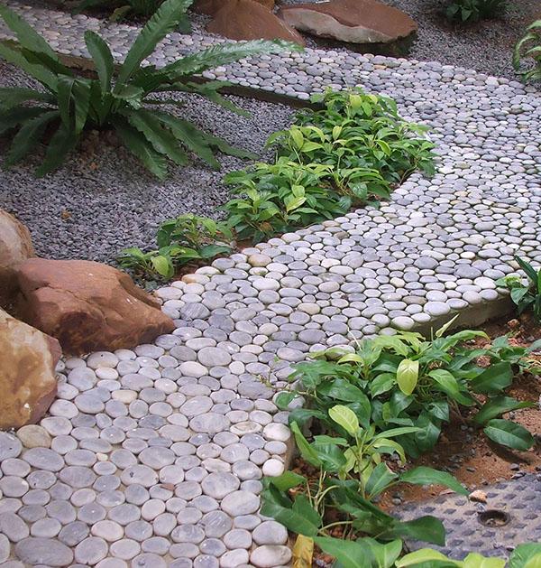 Jardin Ultra Moderne Avec Du Gravier Décoratif Galets Et Plantes 1 89