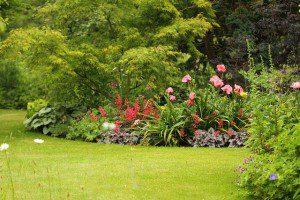 Massif de jardin anglais © Adheds - Flickr (Creative Commons)