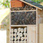 Petite maison à insectes ©Zigazou76- Flickr (Creative Commons)