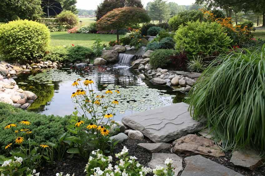 4 styles de bassins copier dans votre jardin