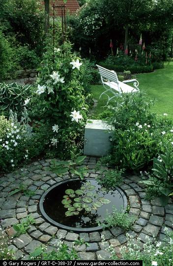 4 questions à vous poser avant de créer un bassin dans votre jardin