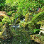 Grand bassin japonais ©inconnu