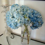 Hortensia en bouquet ©Vmiramontes-Flickr (Creative Commons)