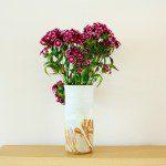 Œillet en bouquet ©Ben K Adams-Flickr (Creative Commons)