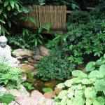 Petit bassin japonais ©inconnu