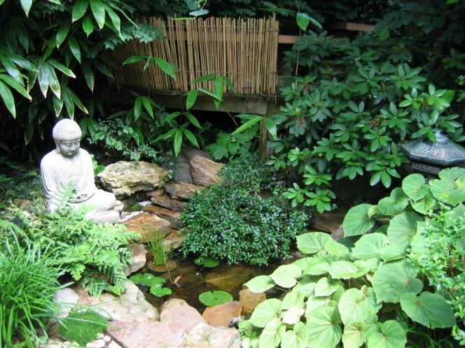 petit bassin japonais inconnu petit bassin japonais tamatelandscaping