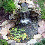 Petit bassin aspect naturel ©inconnu