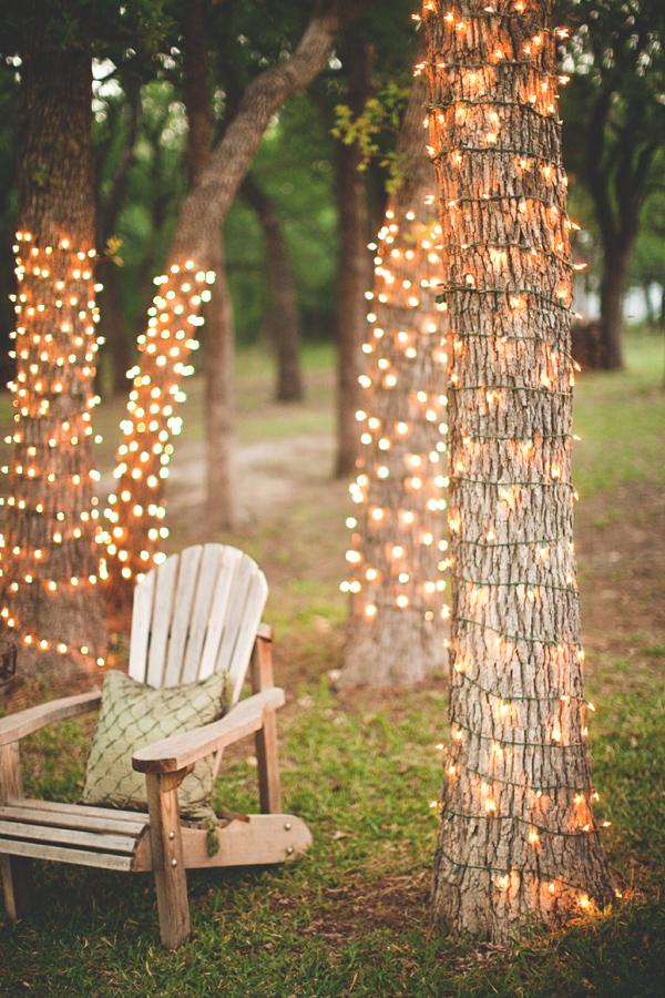 Guirlandes lumineuses autour de troncs d'arbres ©stevenmichaelphoto.om