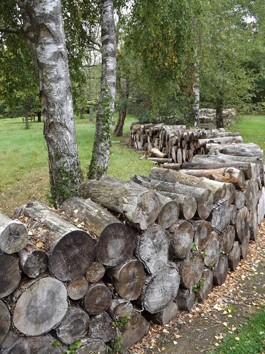 15 créations DIY pour le jardin à partir de rondins de bois