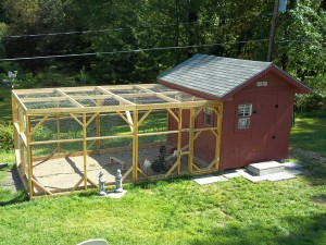 Grand poulailler avec volière ©MoonShadows/Backyardchickens.com