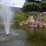 Jet au milieu d'un bassin ©Agriline