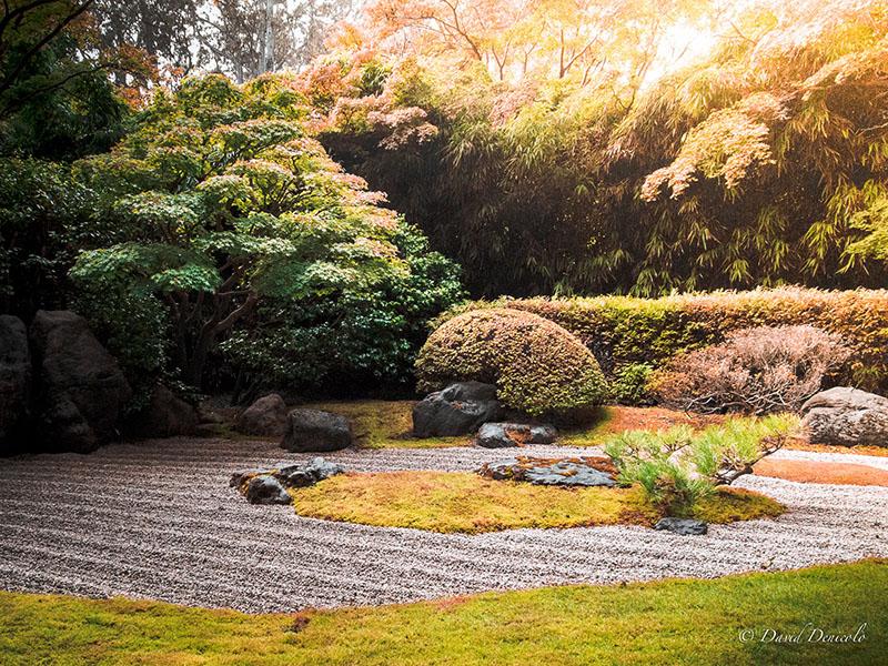 Id es et conseils pour cr er une ambiance zen au jardin for Ambiance zen jardin