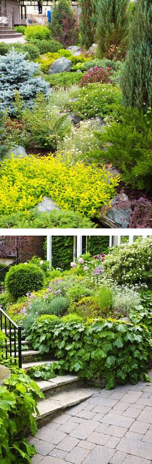 m thode choisir les plantes adapt es son jardin sans rien y conna tre et en une journ e. Black Bedroom Furniture Sets. Home Design Ideas