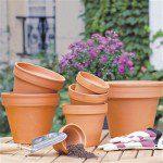 """Versions simples que l'on trouve parfois sous l'appellation """"pots horticoles"""" ©Truffaut.com"""