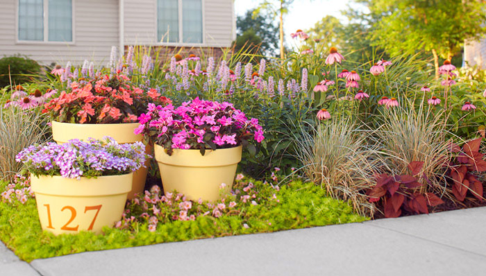 Des pots dans un massif ©Lowes.com