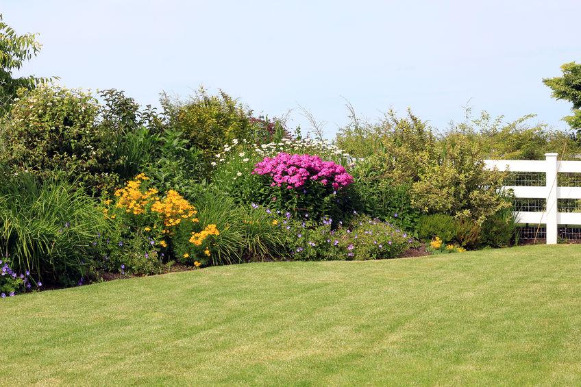 Comment bien concevoir ses massifs de fleurs avant la plantation ?