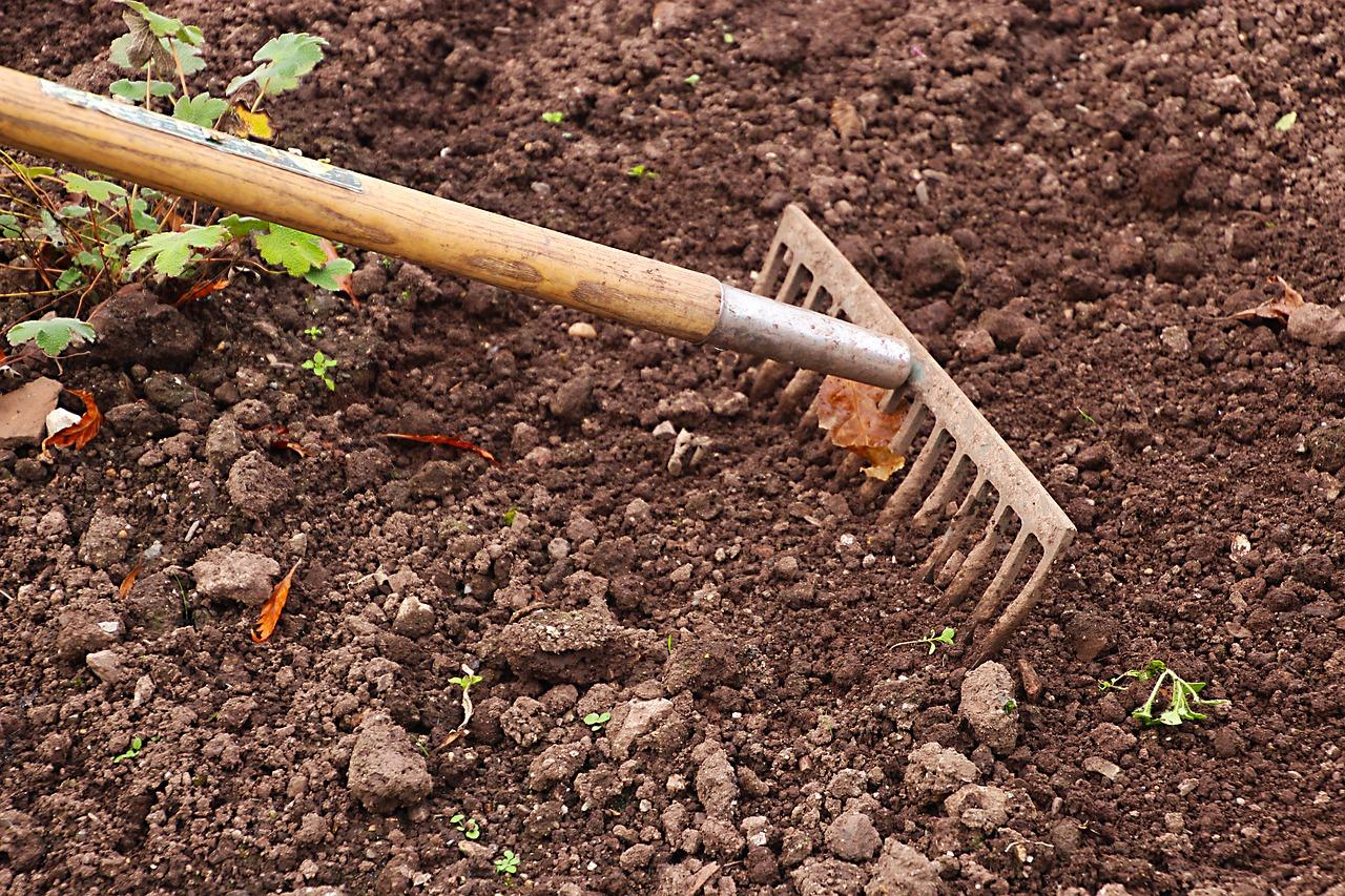 Quoi Planter Dans Une Terre Argileuse mauvaise terre au jardin : voici la solution miracle (si si)
