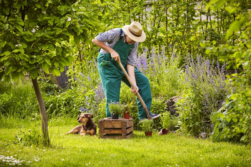 Cr er son jardin soi m me et petit petit le pi ge viter - Creer son jardin ...
